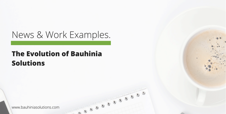 The Evolution of Bauhinia Solutions