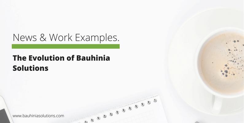 The Evolution of Bauhinia Solutions