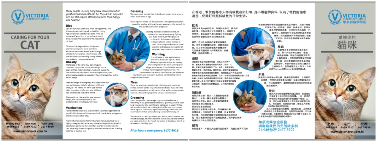 Caring for your Cat brochure